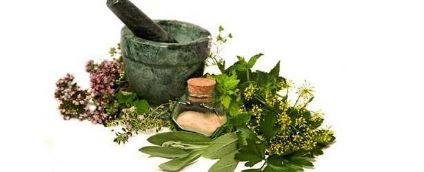 4 Herbs For Longer Hair